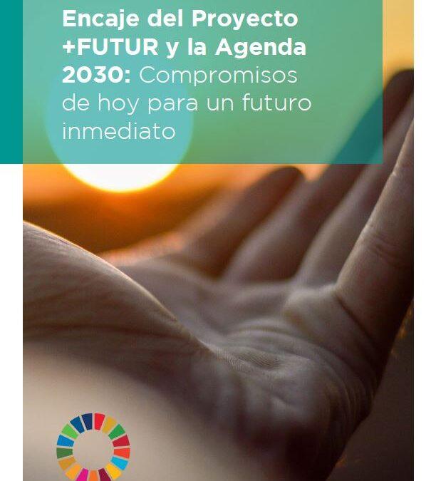 Encaje entre las propuestas de transformación estratègica de las organizaciones +FUTUR y los ODS.